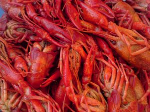 Healthy Cajun Recipes